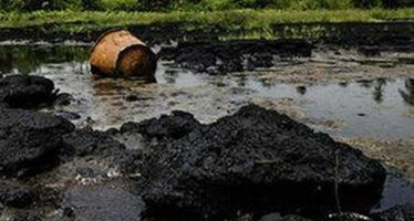 Ogoni Land Clean-up: A step in the right direction but…