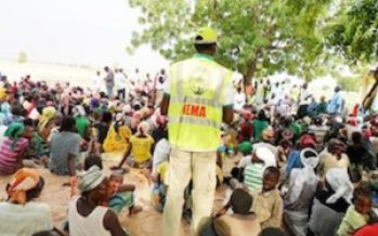 Northern Young Professionals To Rehabilitate IDPs In North East