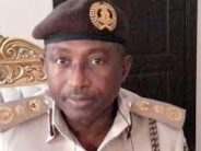 REVEALED: How Nigeria Immigration Service CG's Tenure Got Extended