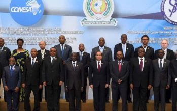 Unified Visa will not work in Africa without model for development – Envoy