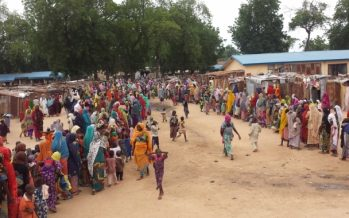 Insurgency aftermath: massive aid effort needed for Borno State