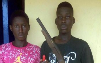 Notorious cultists terrorising Ogun residents arrested