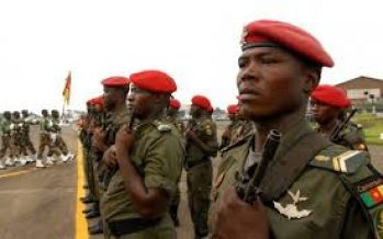 Amnesty accuses Cameroon of human rights violations