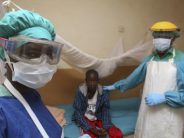 FG collaborates with Delta to check spread of Lassa Fever