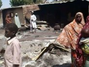 15 Borno communities facing urgent health crisis- WHO