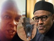 VOX POP-'Was it a crime to name a dog after Buhari?'