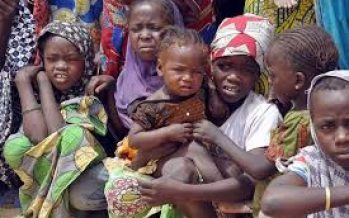 NEMA lists donations to IDP camps in 2016