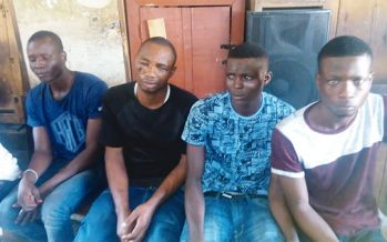 Robbers spend six hours in victim's house