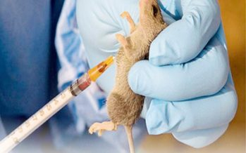 Another doctor tests positive to Lassa fever in Lagos