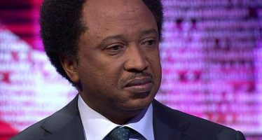 Monitor FG's projects in North- Sen Sani to ACF