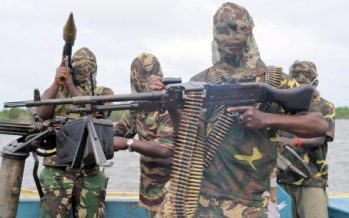 Nigeria loses N2.1 trillion to Niger Delta militants, vandals in 2016