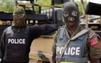 Police RRS foils kidnap attempt of 2-year-old boy in Lagos