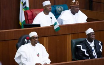 EDITORIAL: How 'open' is the 2017 NASS budget?