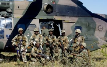 We are ready for you, army warns killer herdsmen