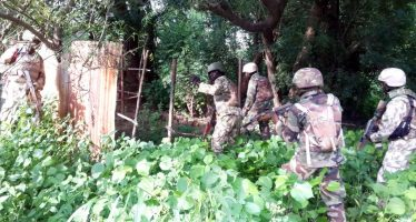 Army finds more shallow graves of insurgents
