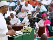 How relevant is the National Assembly's oversight function?