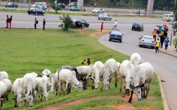 FG to starts cattle colonies next week, to stop open grazing