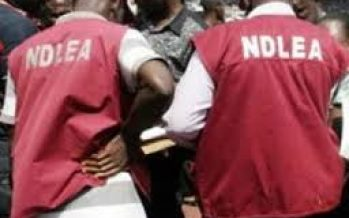 NDLEA seizes 135kg of cough syrup worth N4m in Sokoto — Command