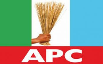 Lagos By-Election: Akinwunmi, APC candidate emerges winner