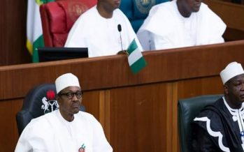 N/Assembly has powers to add, reduce and review budget estimates- Court
