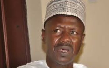 Magu: Senators demand new report from DSS