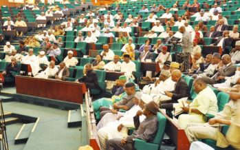 Reps flay delay in Ogoni clean-up