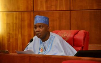 Senate resumes plenary after festive break