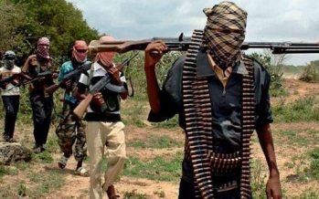 Many feared dead in fresh Adamawa attack