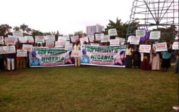 REVEALED: How Buhari's aide, Femi Adesina is connected with Pro-Buhari protesters