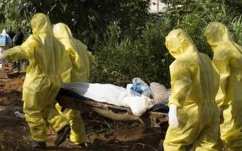 Ogun State confirms Lassa Fever outbreak, 66 people quarantined