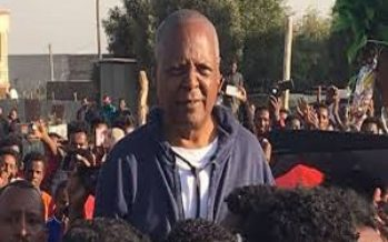Ethiopian opposition leader gets freedom from prison