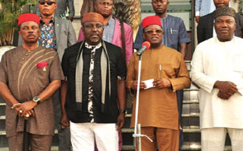 S'East Governors Asked To Invest In Ranches