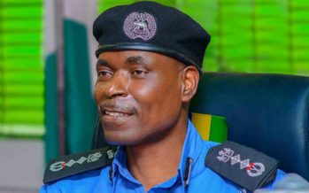 Peace Restoration: IGP Commends Borno Police Commissioner, Others