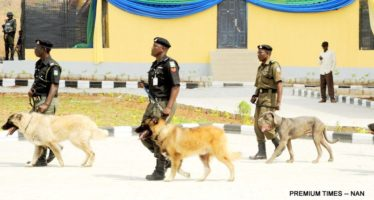 Over N300m INEC's Budget For Security Dogs, Horses Unaccounted For