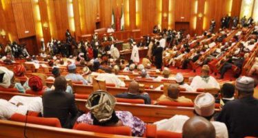 Senate Never Asked Our Management Staff To Step Aside – NTA