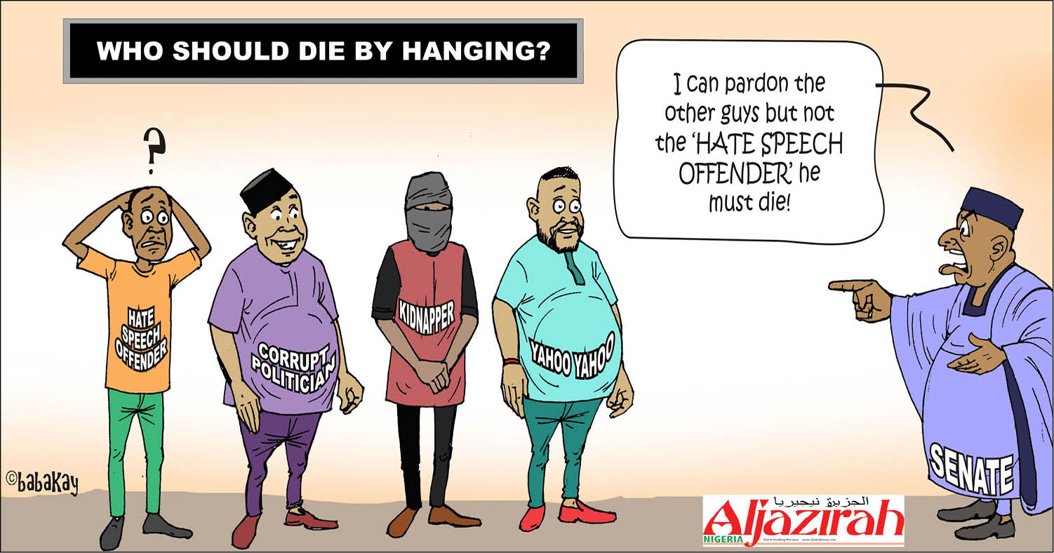 Image result for Nigerian hate speech cartoons