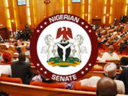 Senate Probes Invasion Of Court By DSS