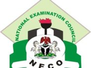 EndSARS: 233,000 NECO Candidates Who Missed Exams To Resit Papers