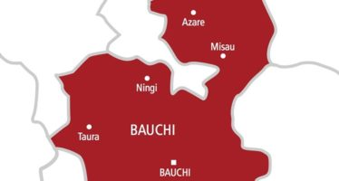 Bauchi State: A Brief Assessment From 1976