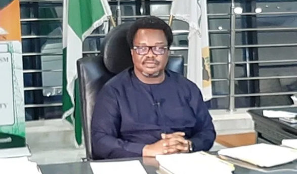 NIPP Plants Will Boost National Grid With 5,000mw Of Power – NDPHC