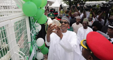 Pigeons Released By Buhari Refused to Fly at Armed Forces Remembrance